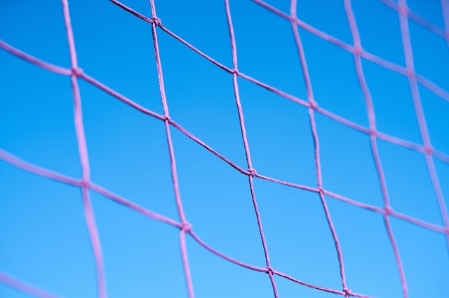 Volleyball opens to limited spectators